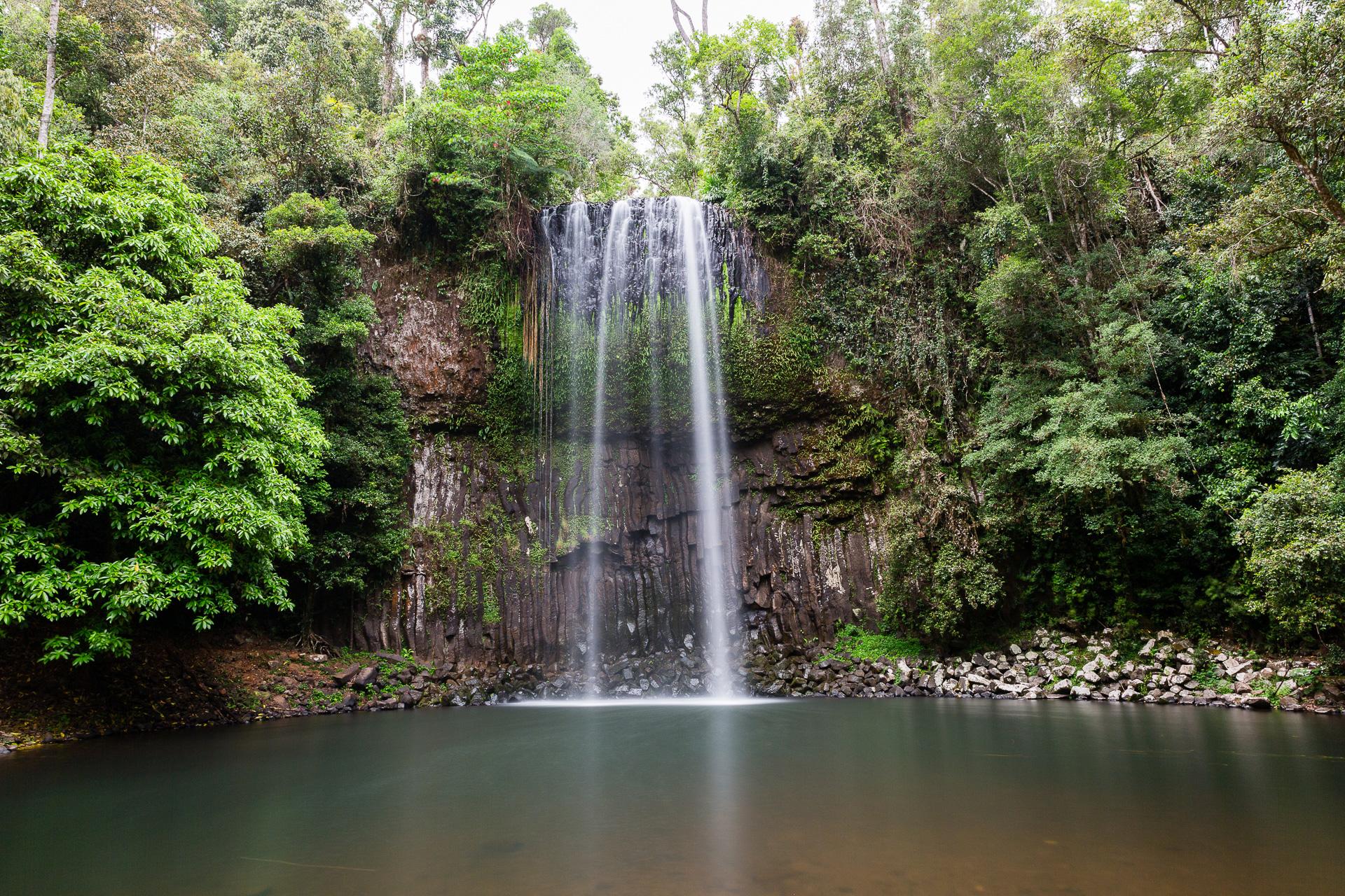 Bild: Millaa Millaa Falls Atherton Tablelands Australien