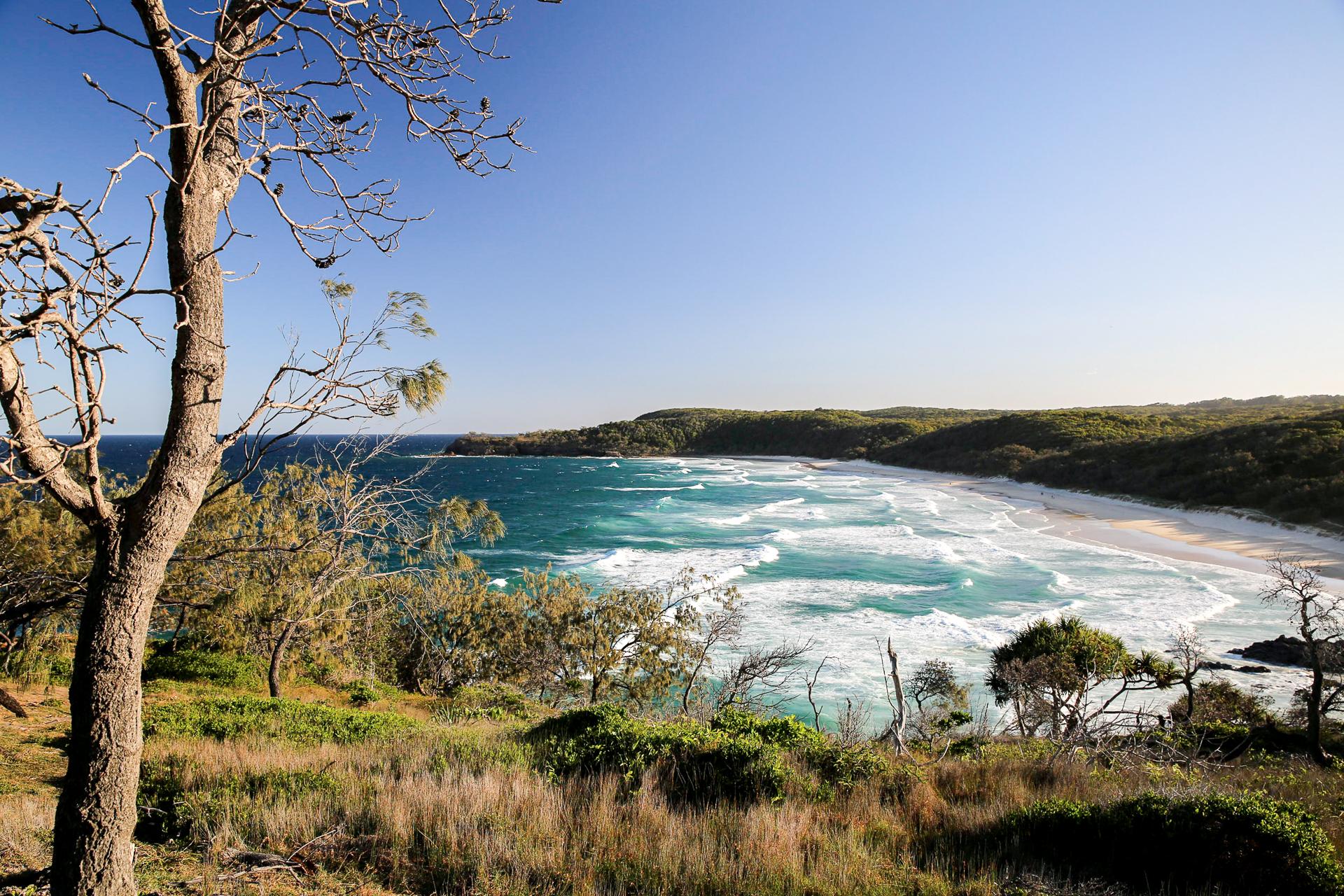 Bild: Noosa Nationalpark an der Ostküste Australiens Noosa Heads