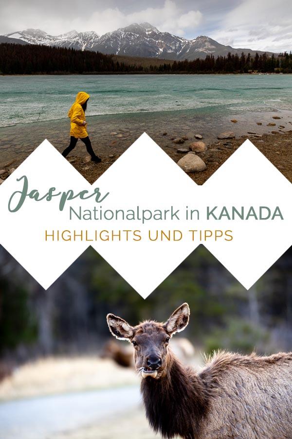 Jasper Nationalpark Sehenswürdigkeiten und Reisetipps Reisebericht