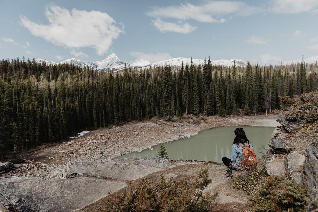Bild: Icefields Parkway Tipps Athabasca River Falls Wasserfälle Rocky Mountains in Kanada