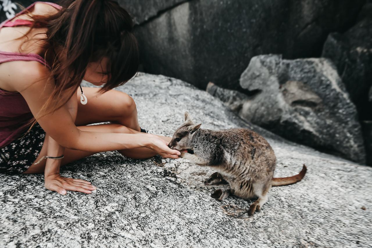 Bild: Geheimtipp Ostküste Australien Roadtrip Queensland