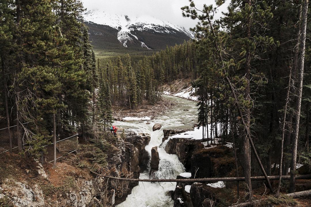 Bild: Icefields Parkway Tipps Sunwapta Falls Wasserfälle Rocky Mountains in Kanada