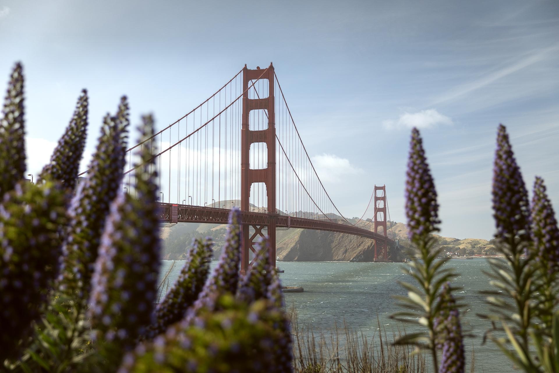 Golden Gate Bridge in San Francisco Frühjahr